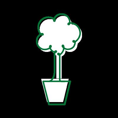 Comércio de mudas de árvores nativas