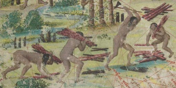 Índios brasileiros recolhendo pau-brasil em mapa antigo