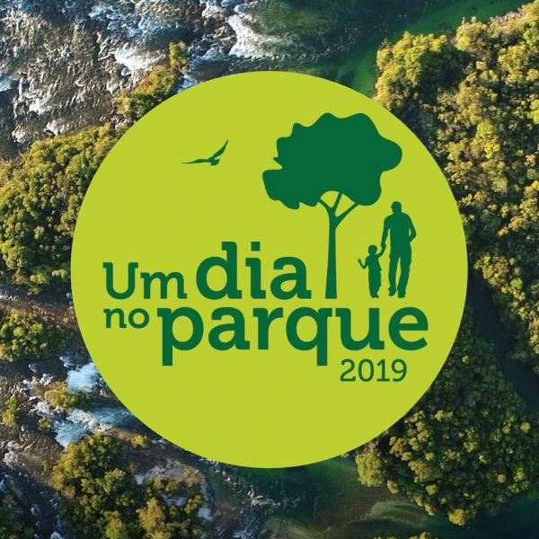 """Logotipo da campanha """"Um dia no parque 2019"""""""