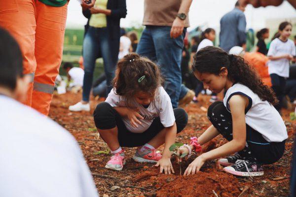 Plantio Bosque Bem-te-vi no Centro da capital paulista / Foto: André Nery – Divulgação SIMA