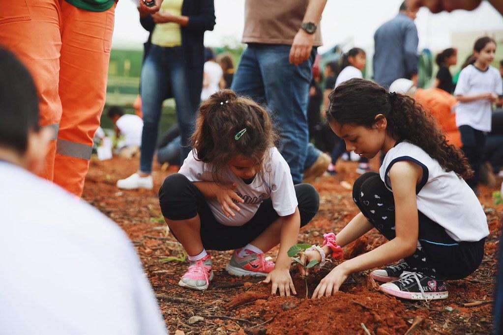 Crianças plantando muda no Bosque Bem-te-vi