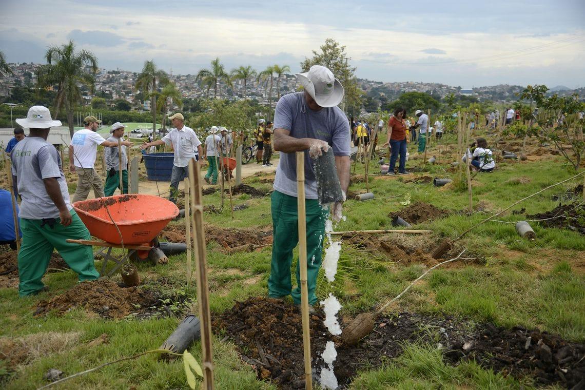 Funcionários da prefeitura do Rio plantando mudas na Floresta dos Atletas