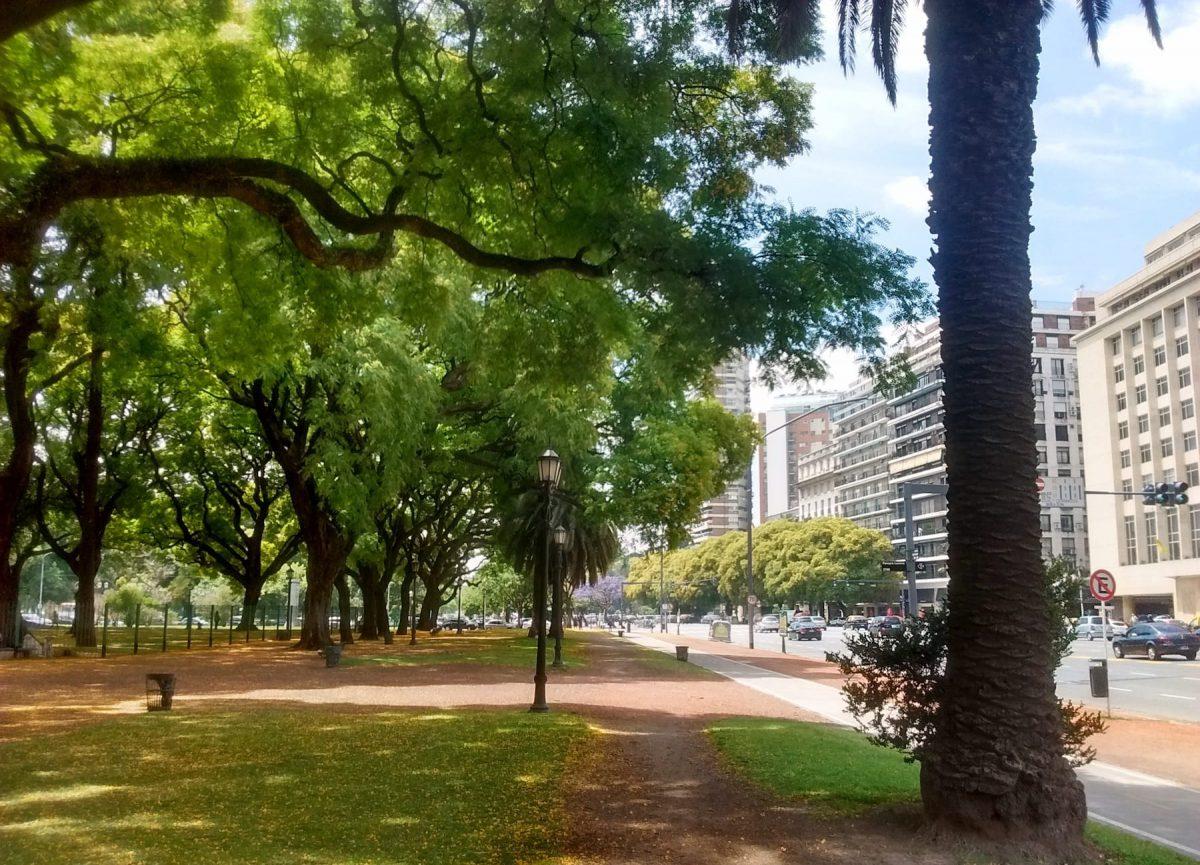 Tipuanas em praça de Buenos Aires